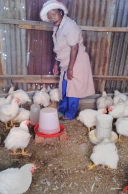 259×393-extra-image-Nondisileko-Manyamawala-poultry-02